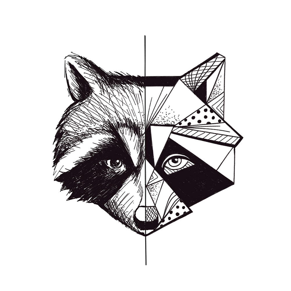 raccoon-missismr